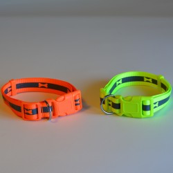 Neon collar